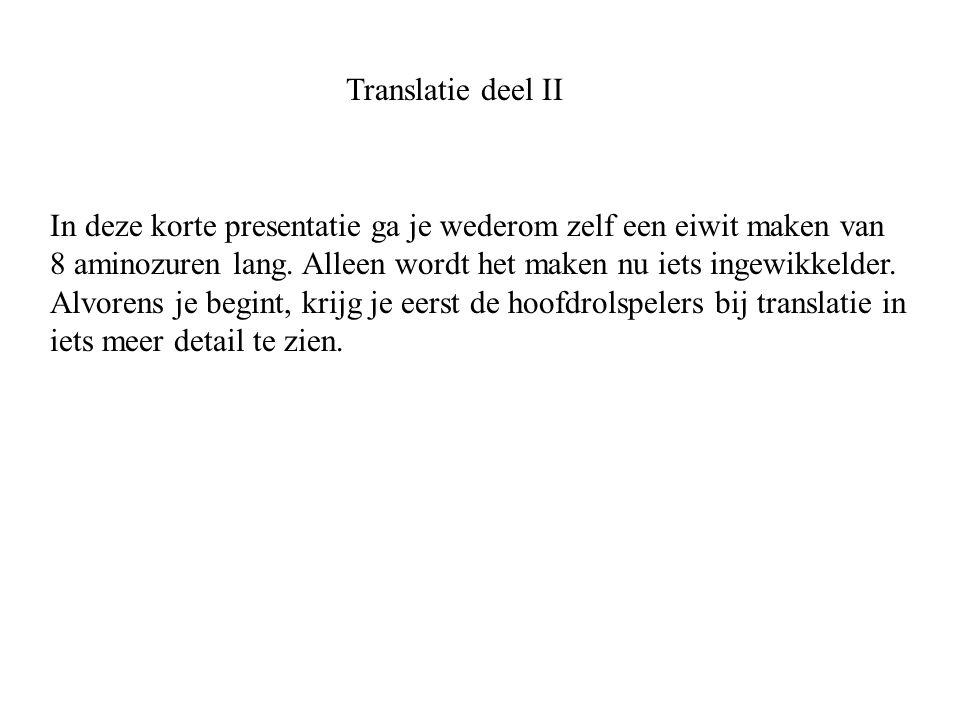 Translatie deel II In deze korte presentatie ga je wederom zelf een eiwit maken van.