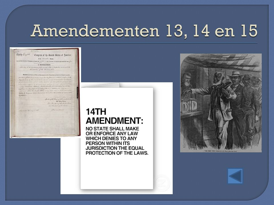 Amendementen 13, 14 en 15