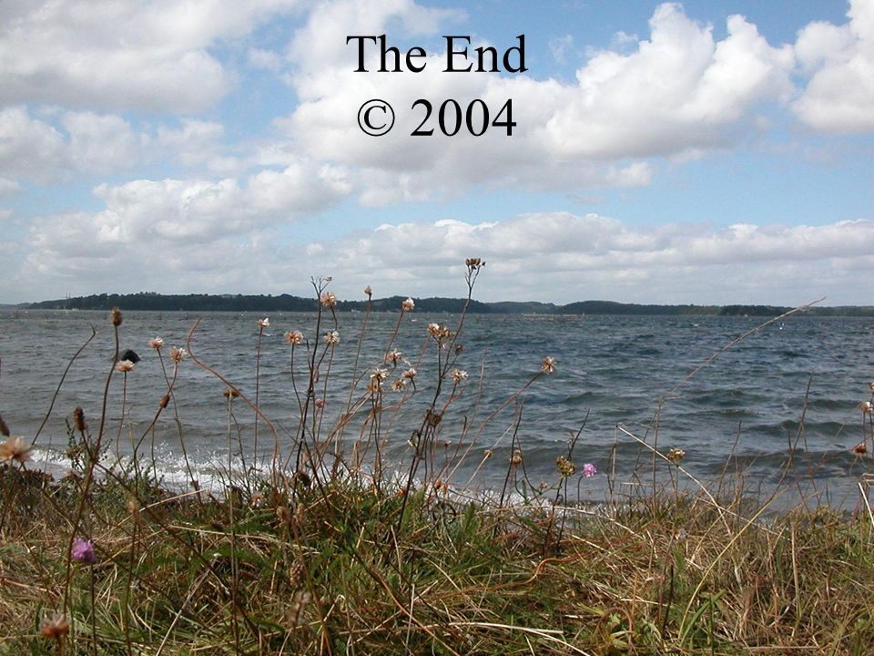 The End © 2004 Software: Windows 76 1ste Camera: Ons Twan Productie: