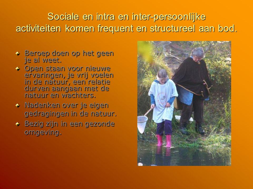 Sociale en intra en inter-persoonlijke activiteiten komen frequent en structureel aan bod.