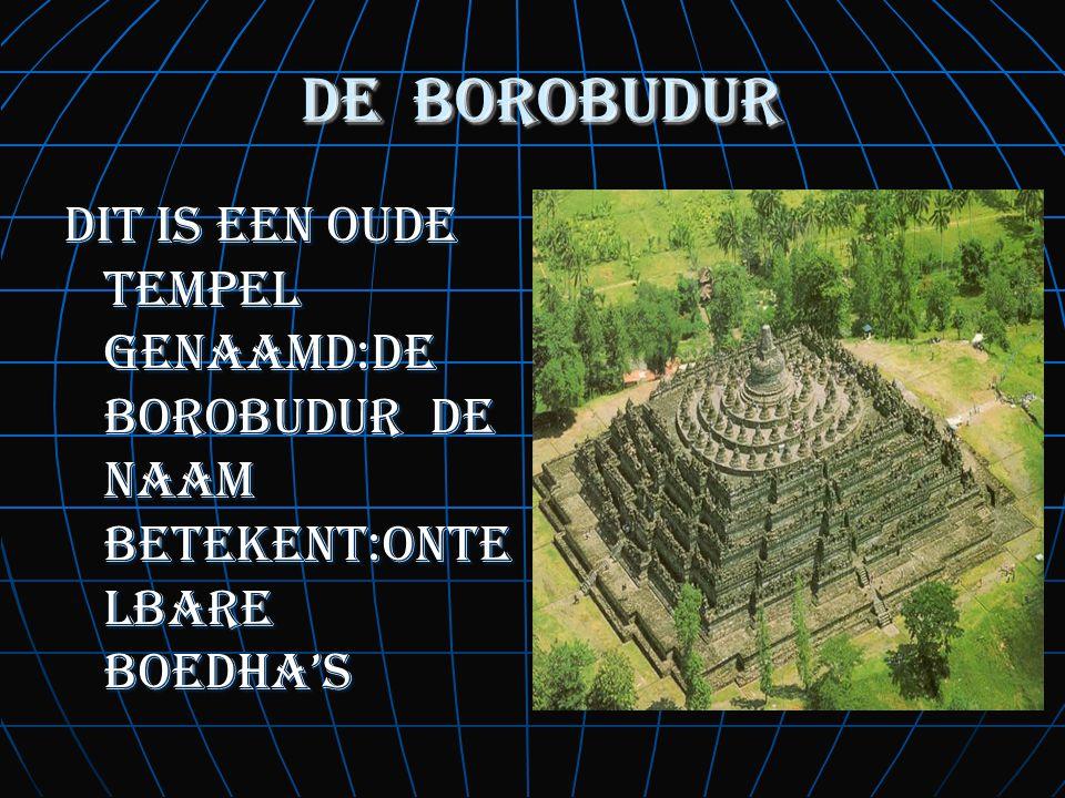 de borobudur dit is een oude tempel genaamd:de borobudur de naam betekent:ontelbare boedha's