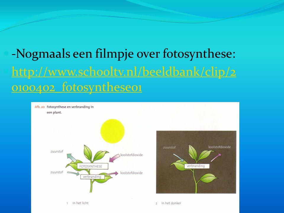 -Nogmaals een filmpje over fotosynthese: