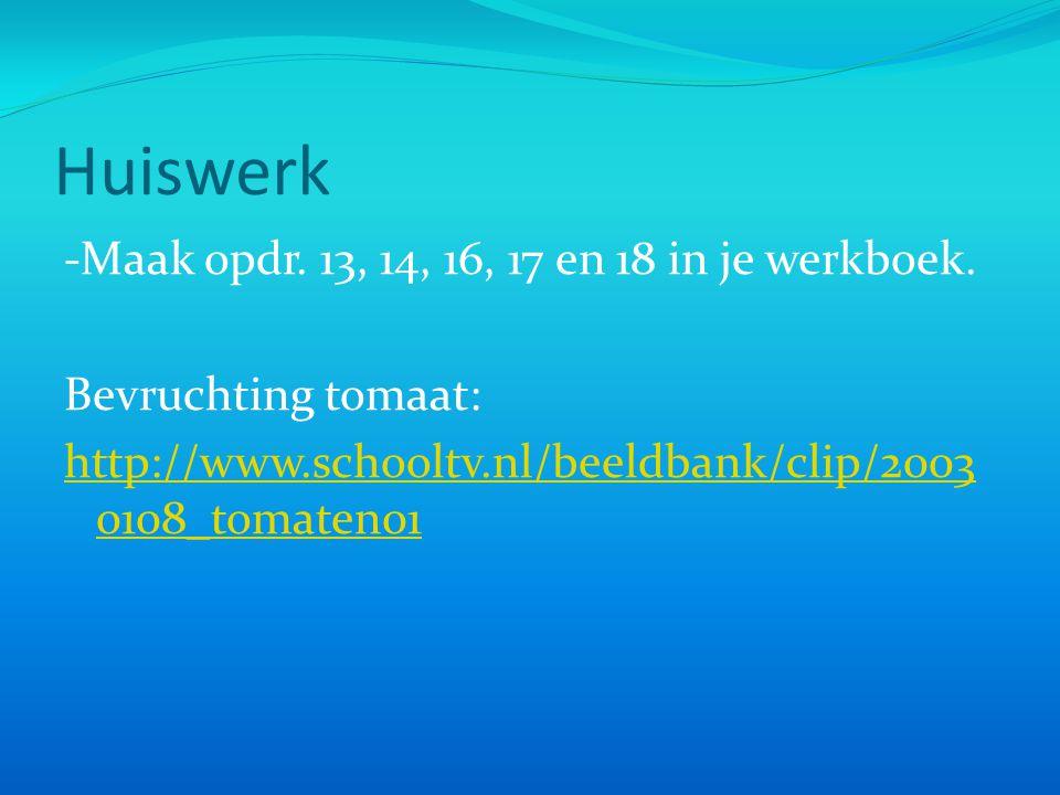 Huiswerk -Maak opdr. 13, 14, 16, 17 en 18 in je werkboek.