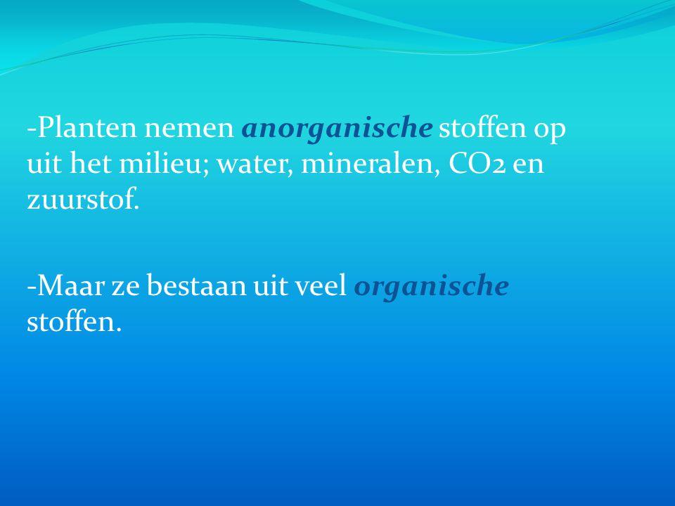 -Planten nemen anorganische stoffen op uit het milieu; water, mineralen, CO2 en zuurstof.