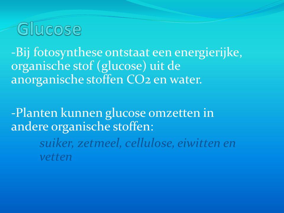 Glucose -Bij fotosynthese ontstaat een energierijke, organische stof (glucose) uit de anorganische stoffen CO2 en water.
