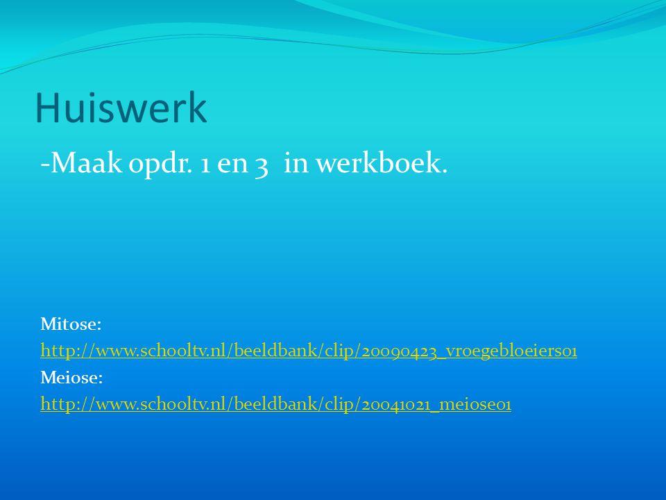 Huiswerk -Maak opdr. 1 en 3 in werkboek. Mitose: