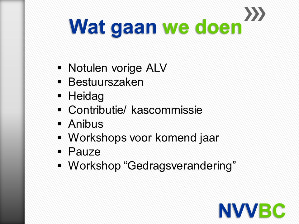 Wat gaan we doen NVVBC Notulen vorige ALV Bestuurszaken Heidag