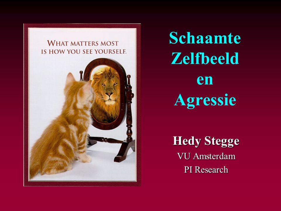 Schaamte Zelfbeeld en Agressie