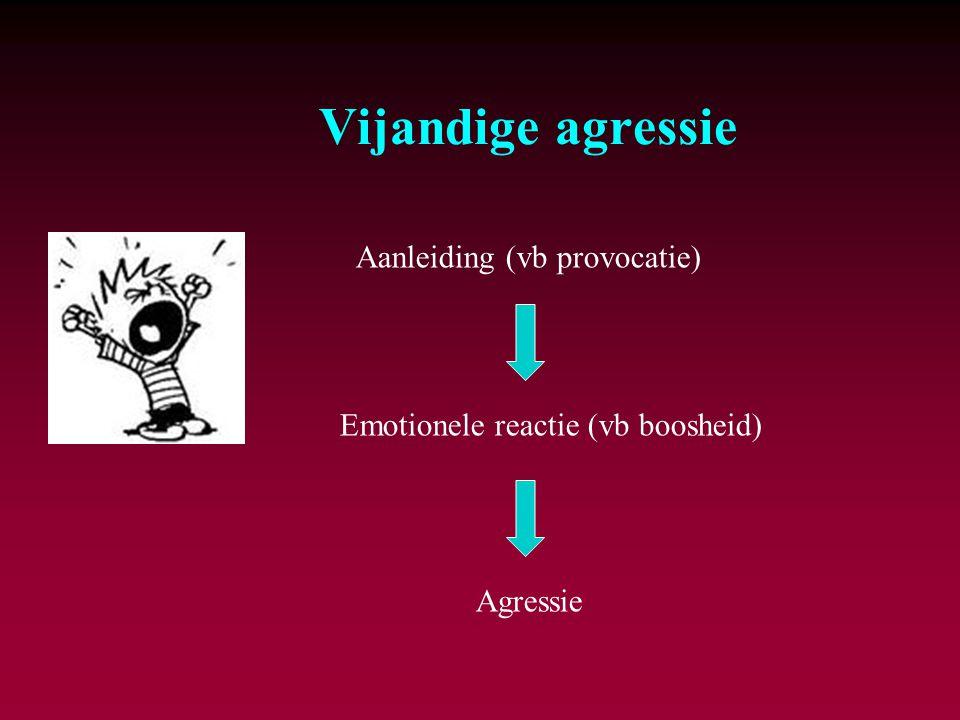 Vijandige agressie Aanleiding (vb provocatie)