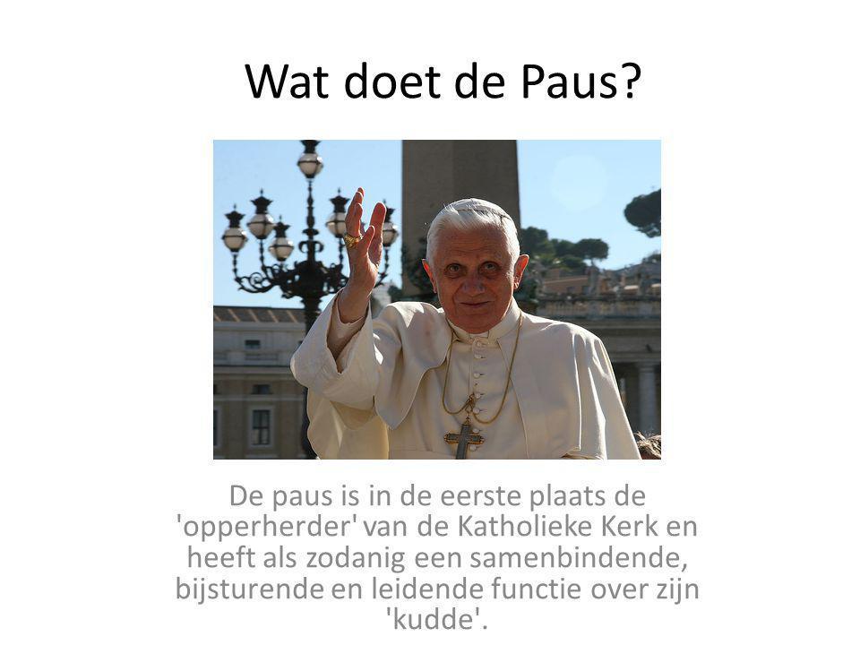 Wat doet de Paus