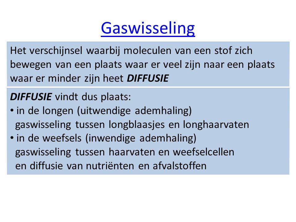 Gaswisseling