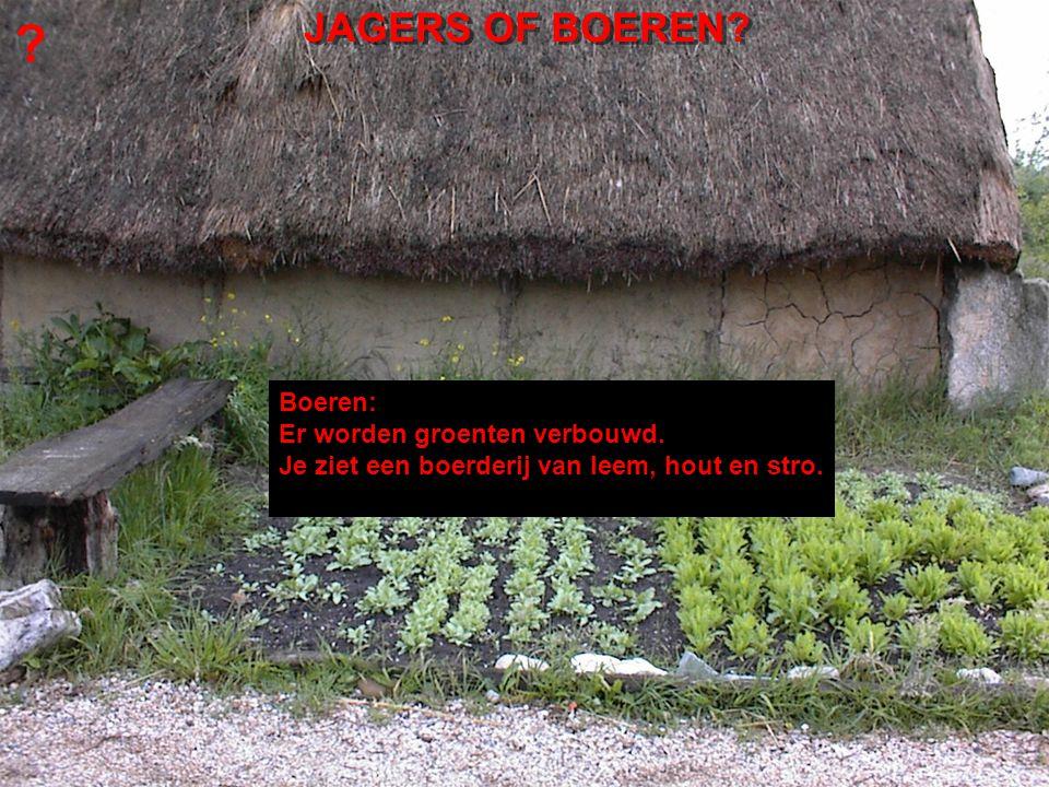 JAGERS OF BOEREN Boeren: Er worden groenten verbouwd.