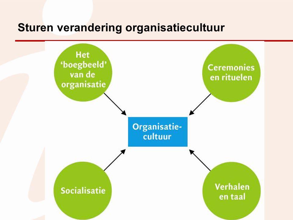 Sturen verandering organisatiecultuur