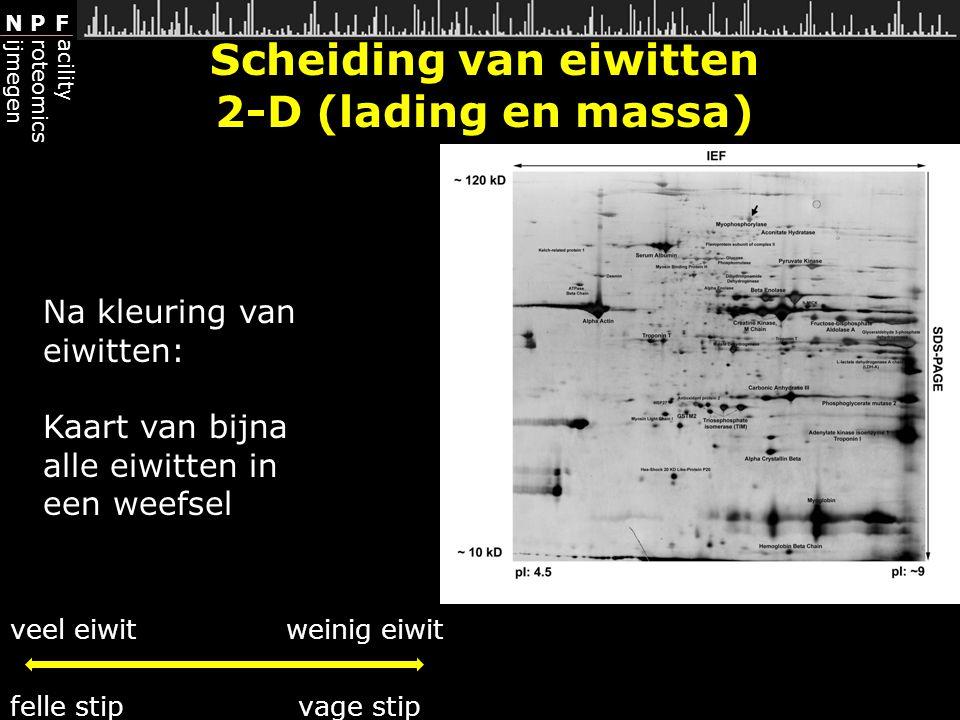 Scheiding van eiwitten 2-D (lading en massa)