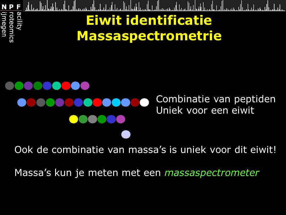 Eiwit identificatie Massaspectrometrie