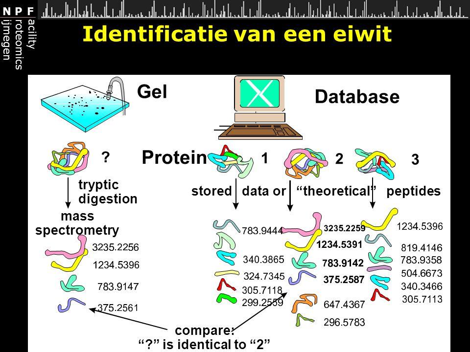 Identificatie van een eiwit