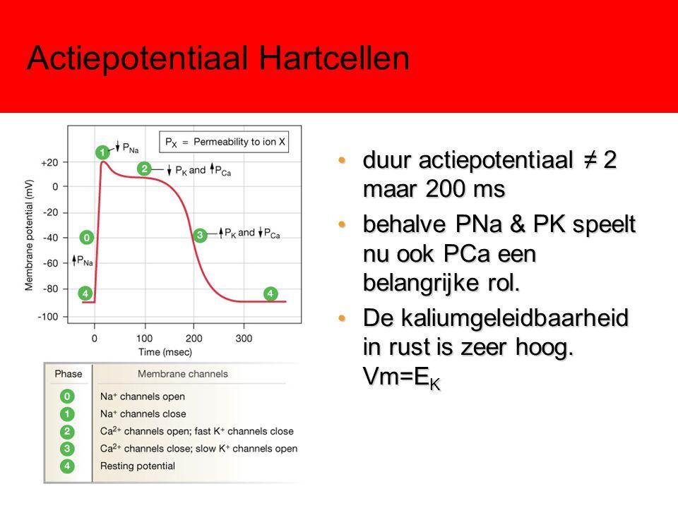 Actiepotentiaal Hartcellen