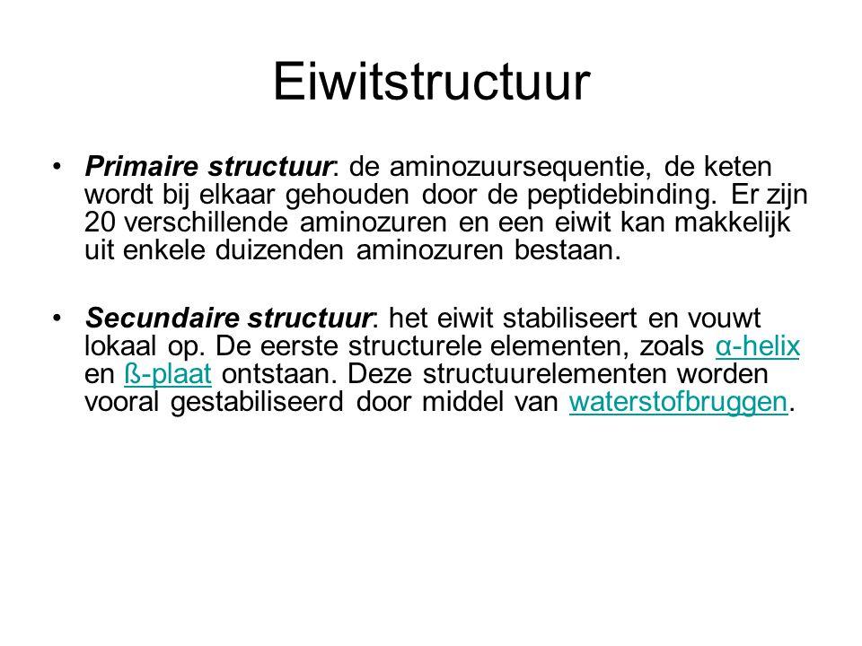 Eiwitstructuur