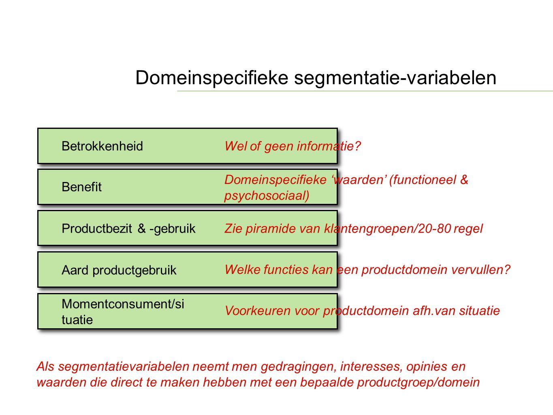 Domeinspecifieke segmentatie-variabelen