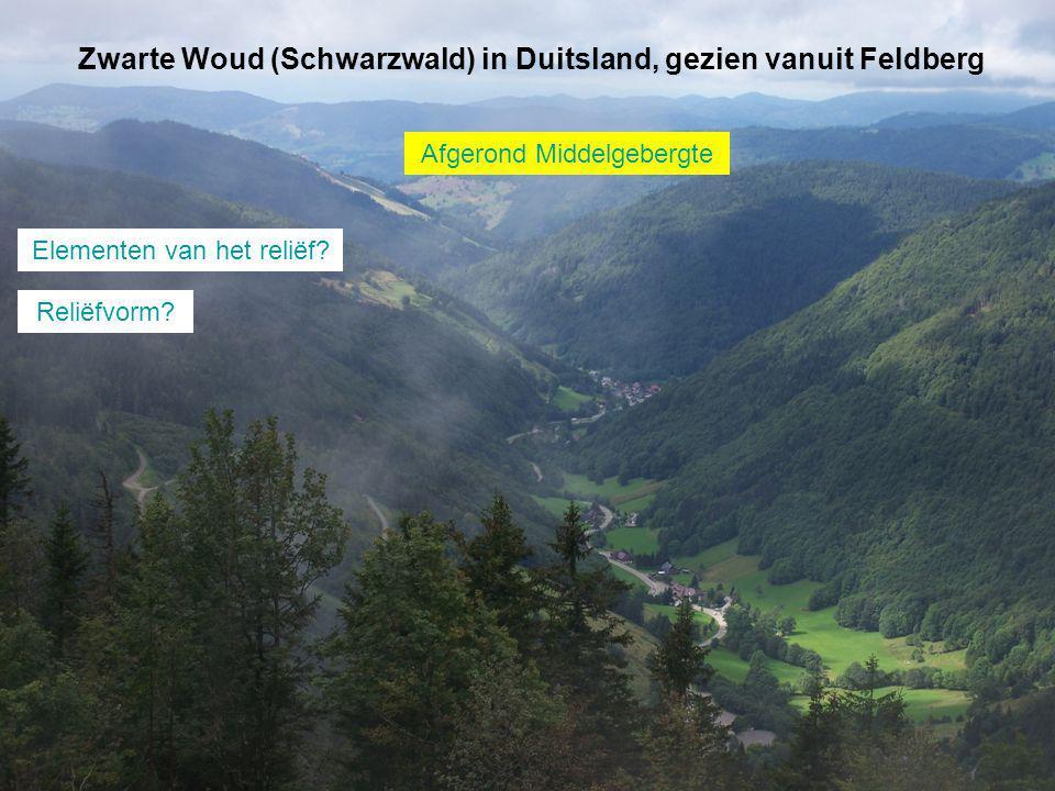 Zwarte Woud (Schwarzwald) in Duitsland, gezien vanuit Feldberg
