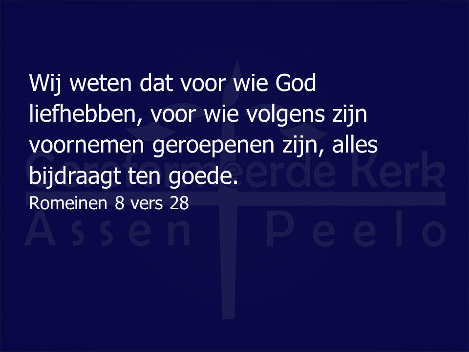 Wij weten dat voor wie God liefhebben, voor wie volgens zijn voornemen geroepenen zijn, alles bijdraagt ten goede.