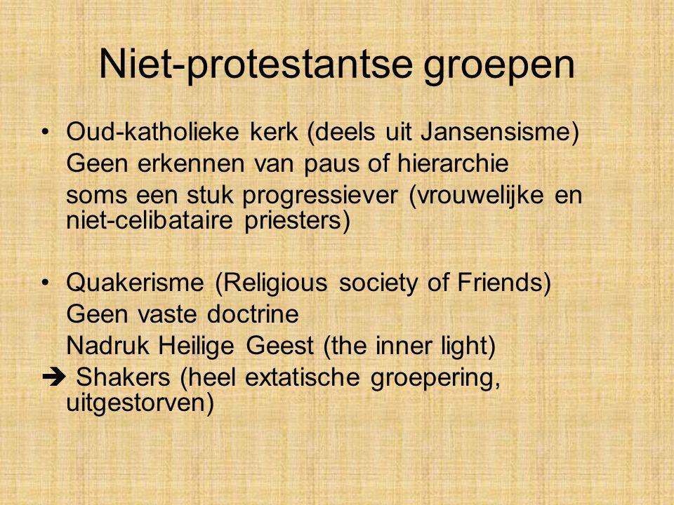 Niet-protestantse groepen