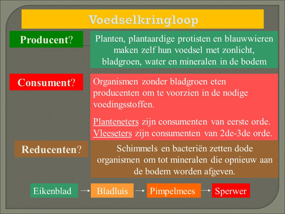Producent Consument Reducenten