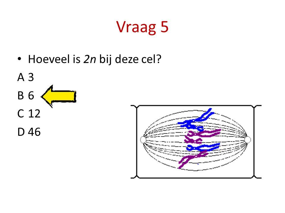Vraag 5 Hoeveel is 2n bij deze cel A 3 B 6 C 12 D 46