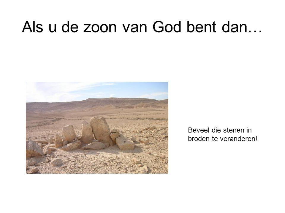 Als u de zoon van God bent dan…