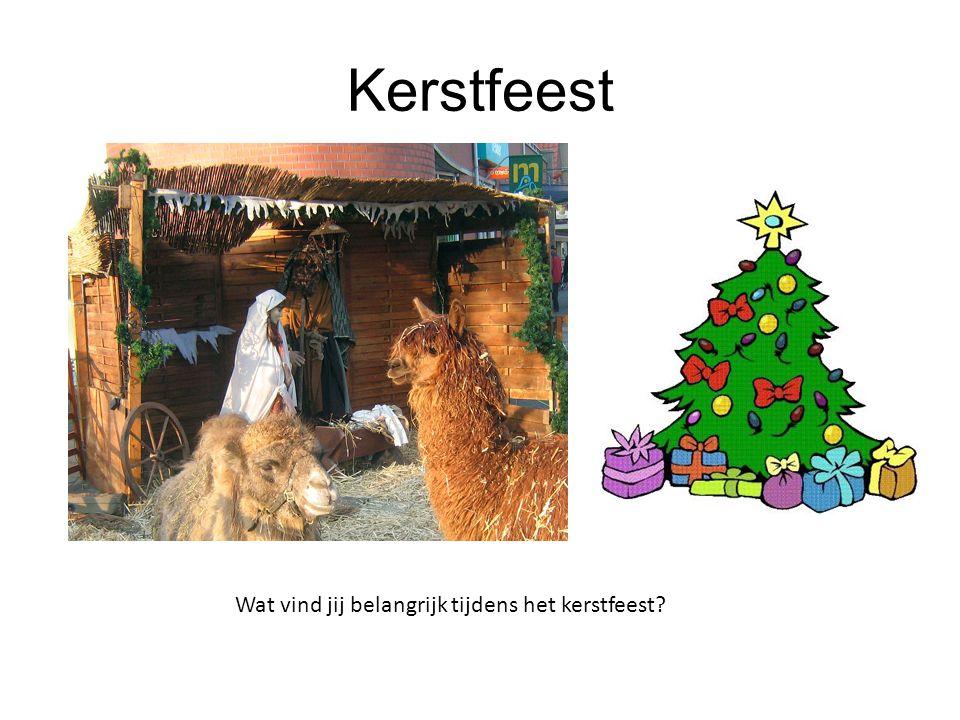 Kerstfeest Wat vind jij belangrijk tijdens het kerstfeest 9