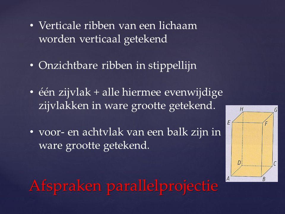 Afspraken parallelprojectie