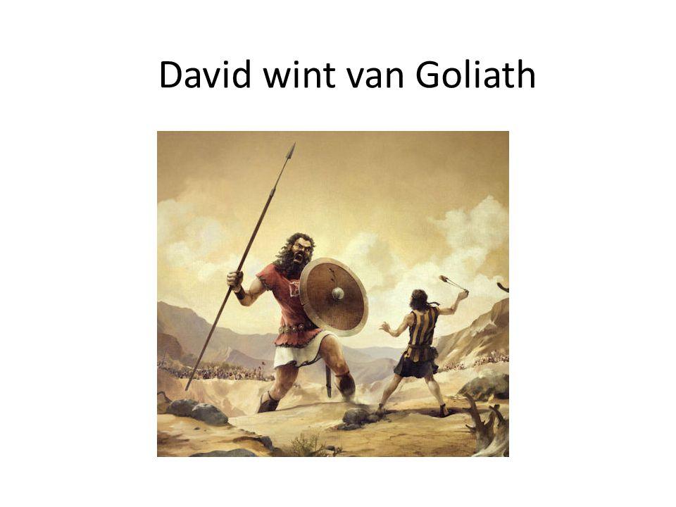 David wint van Goliath