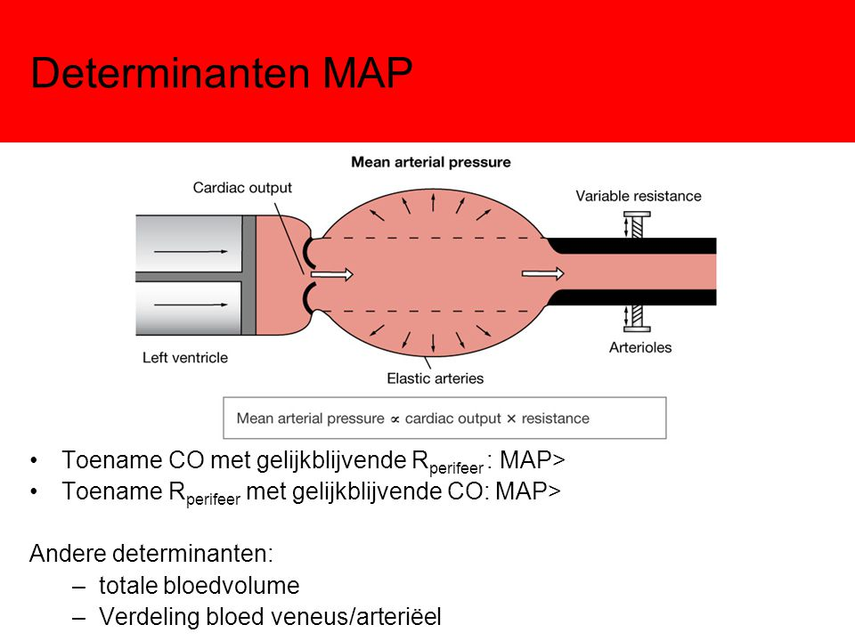 Determinanten MAP Toename CO met gelijkblijvende Rperifeer : MAP>