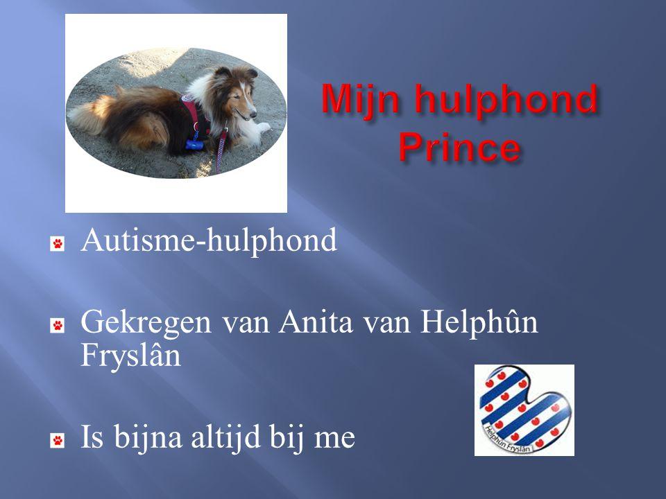 Mijn hulphond Prince Autisme-hulphond