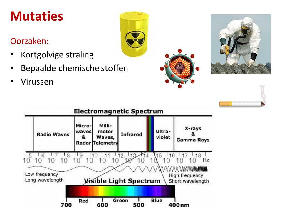 Mutaties Oorzaken: Kortgolvige straling Bepaalde chemische stoffen