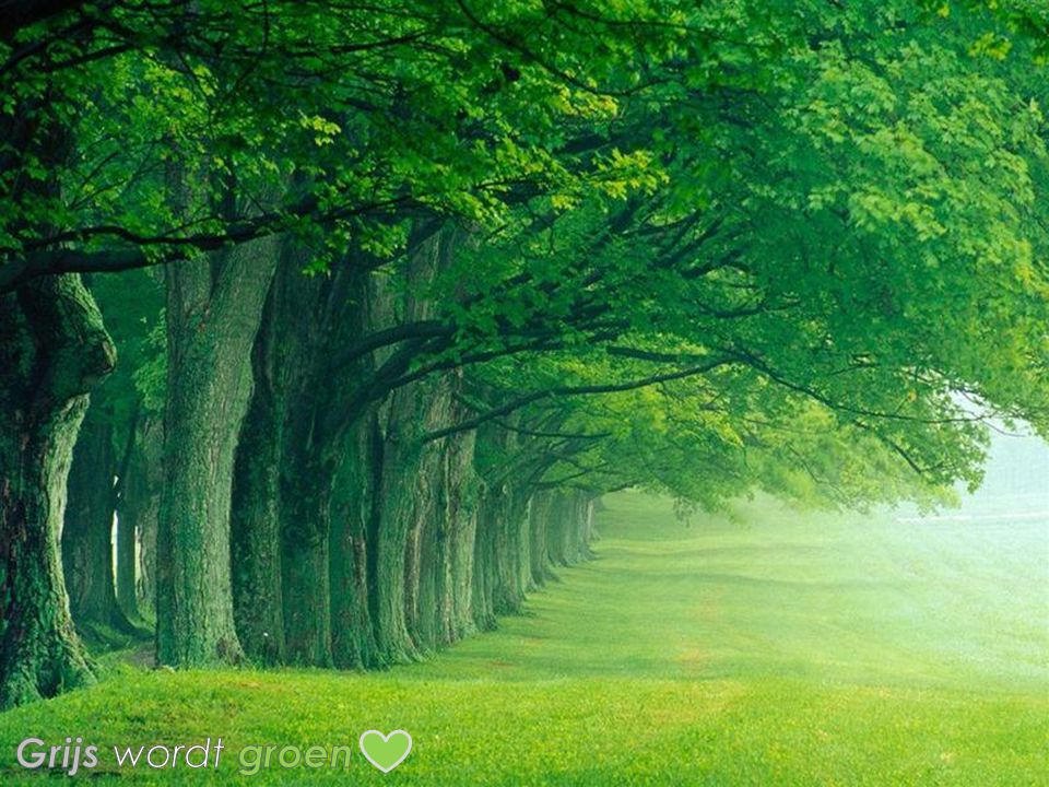 Grijs wordt groen