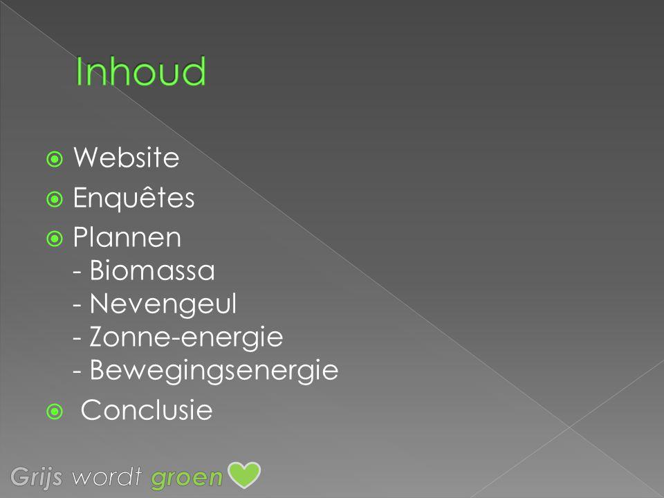 Inhoud Website Enquêtes
