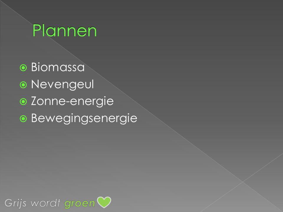 Plannen Biomassa Nevengeul Zonne-energie Bewegingsenergie