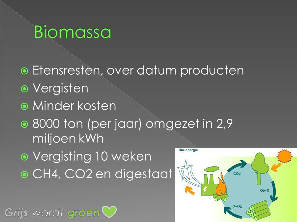 Biomassa Etensresten, over datum producten Vergisten Minder kosten