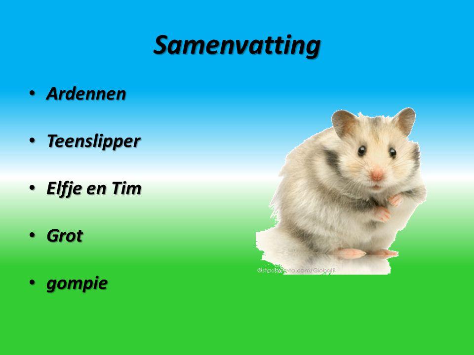 Samenvatting Ardennen Teenslipper Elfje en Tim Grot gompie