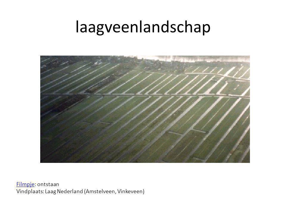 laagveenlandschap Filmpje: ontstaan Vindplaats: Laag Nederland (Amstelveen, Vinkeveen)