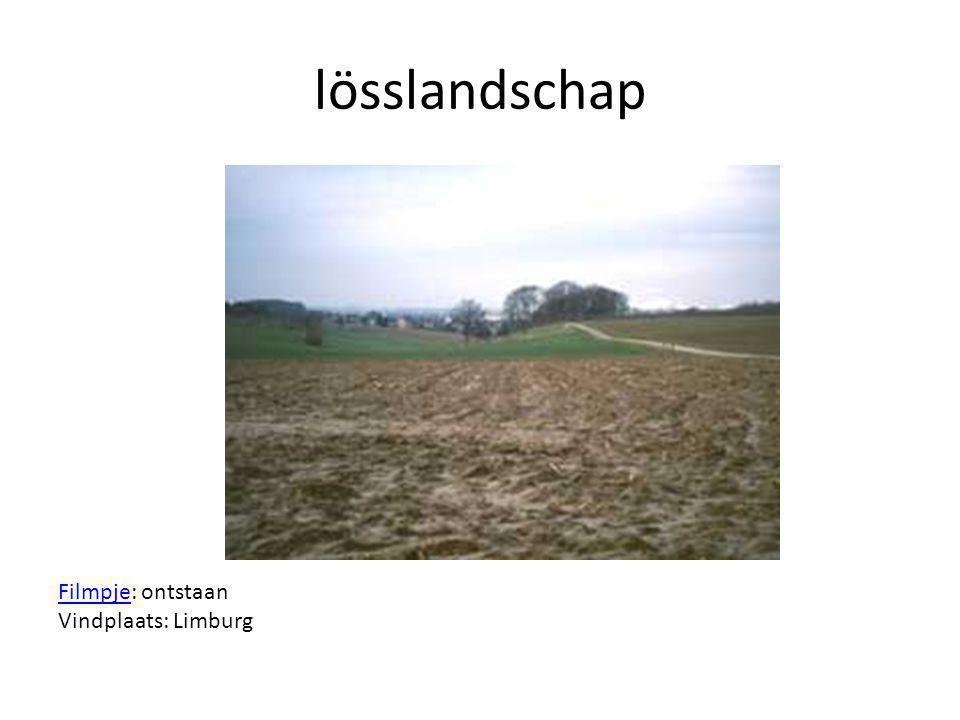 lösslandschap Filmpje: ontstaan Vindplaats: Limburg