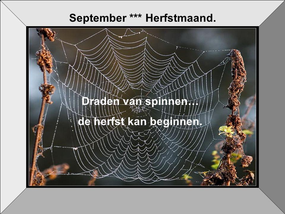 September *** Herfstmaand.