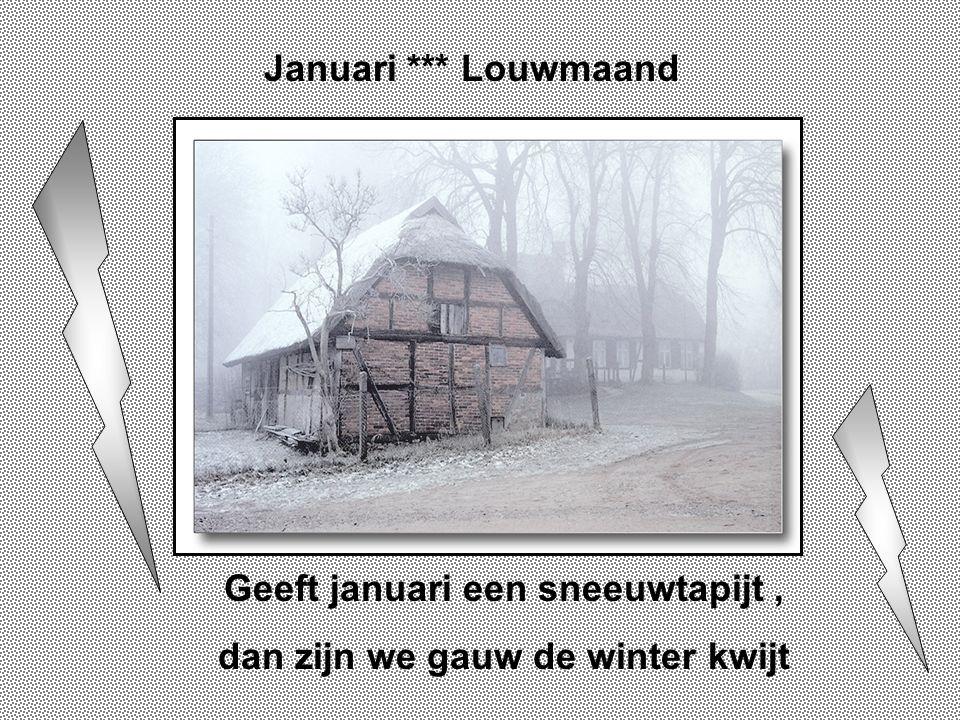 Geeft januari een sneeuwtapijt , dan zijn we gauw de winter kwijt