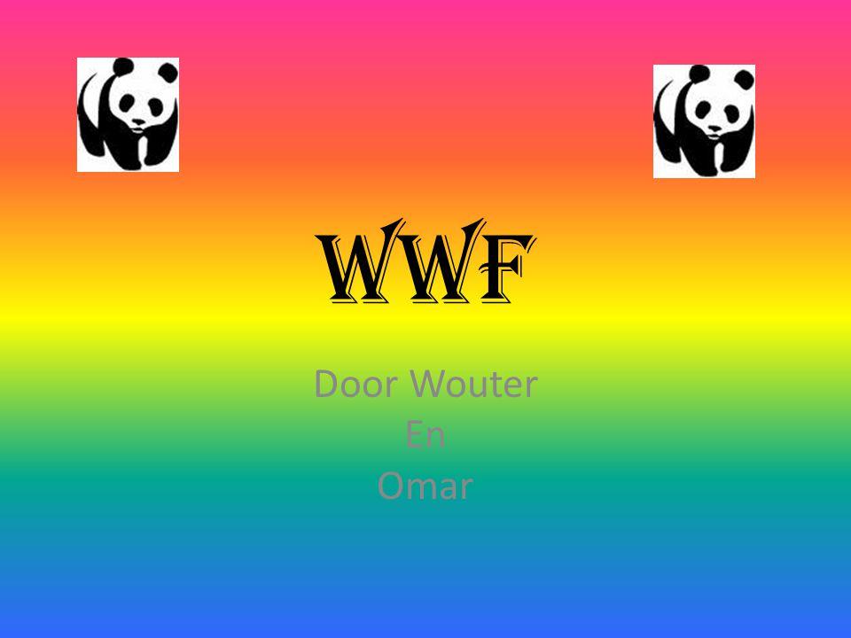 WWf Door Wouter En Omar