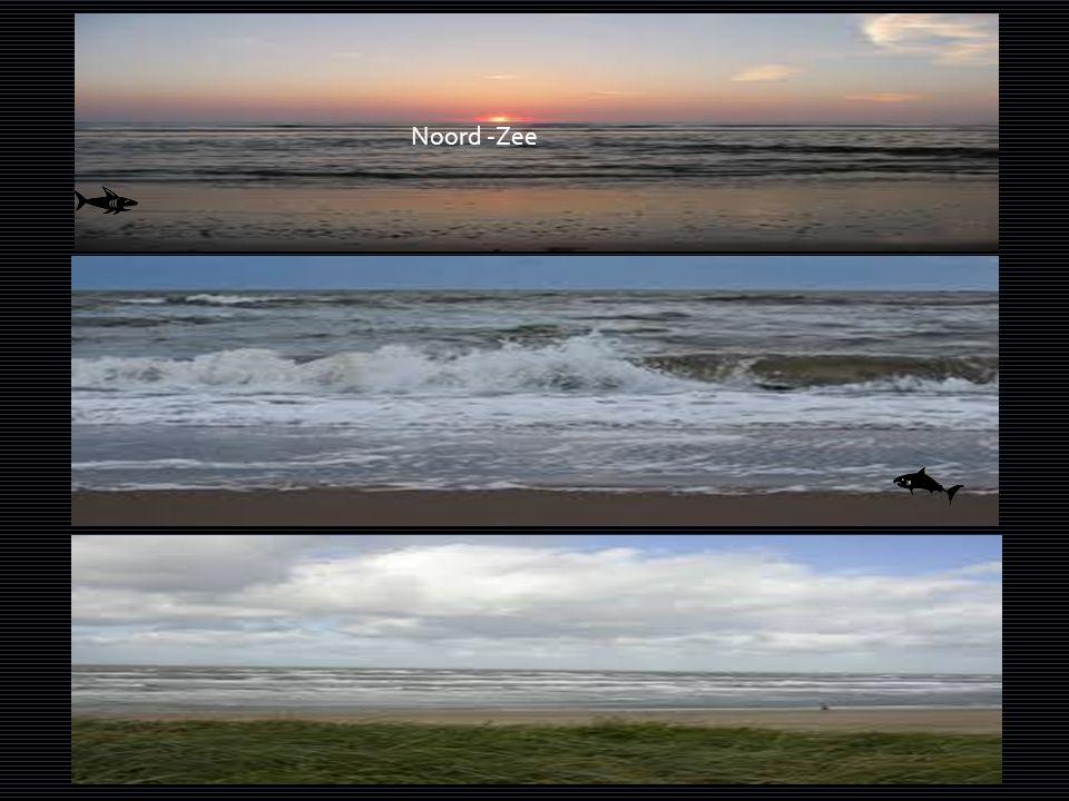 Noord -Zee