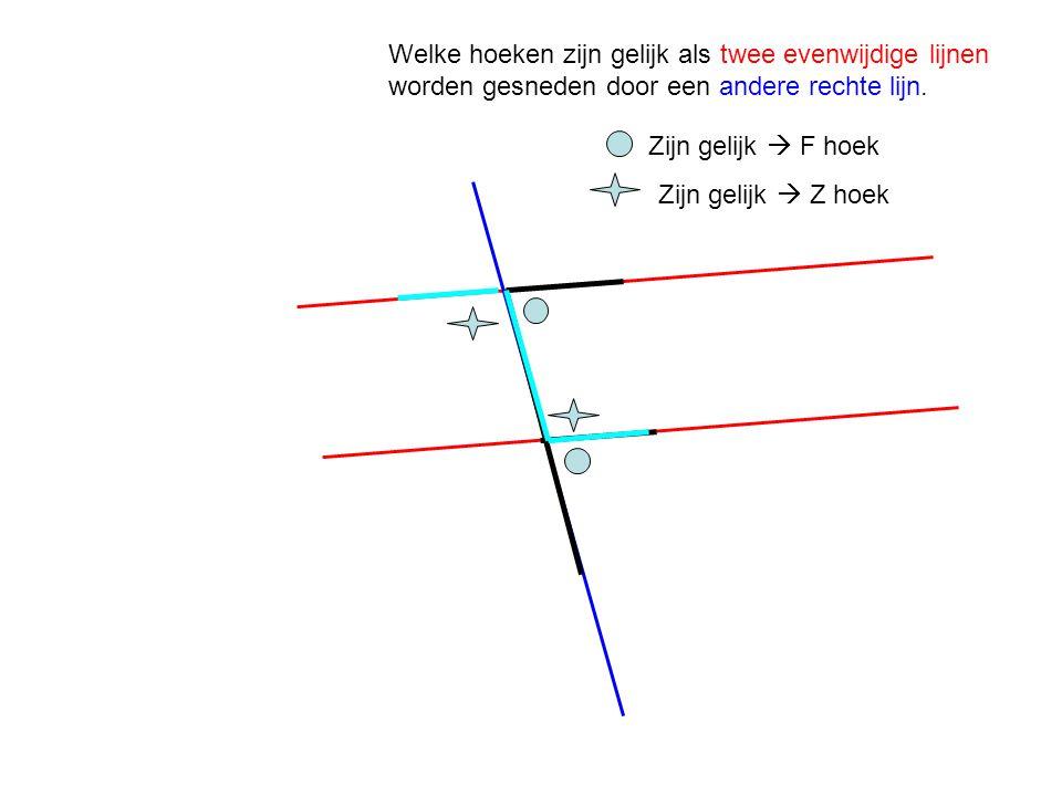 Welke hoeken zijn gelijk als twee evenwijdige lijnen