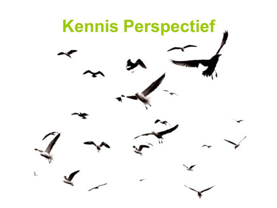 Kennis Perspectief