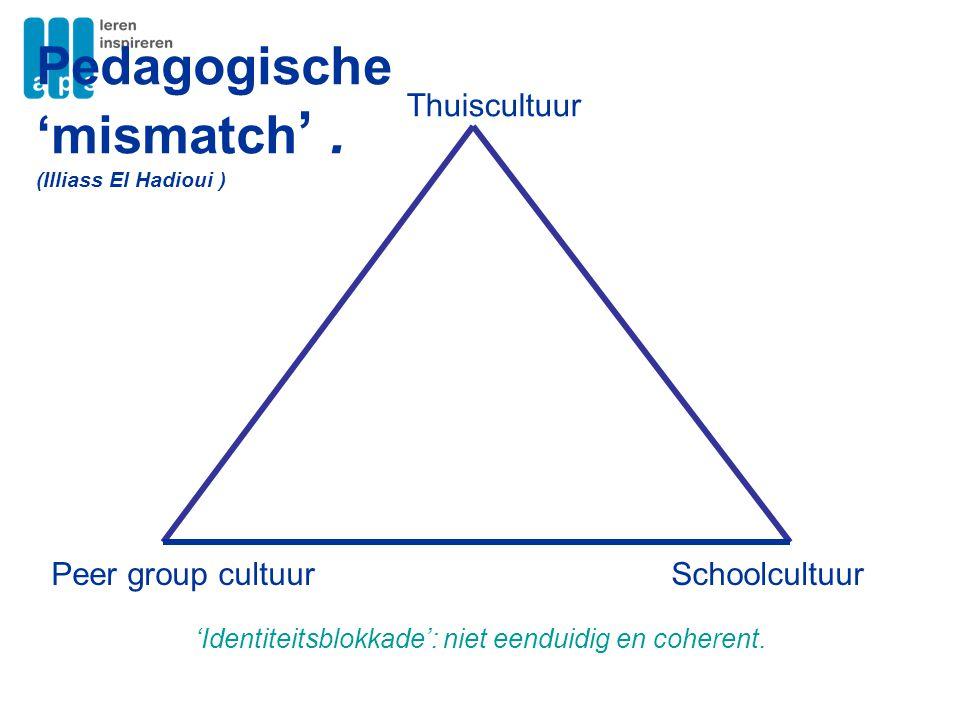Pedagogische 'mismatch' .