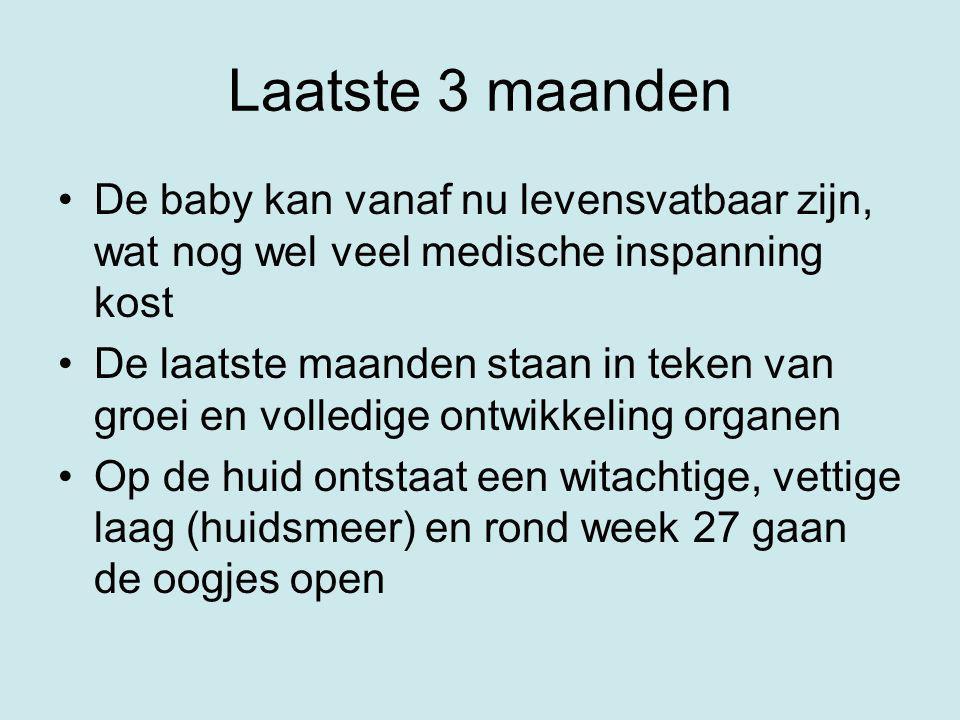 Laatste 3 maanden De baby kan vanaf nu levensvatbaar zijn, wat nog wel veel medische inspanning kost.